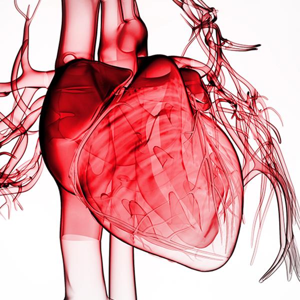Cardiology Magazine