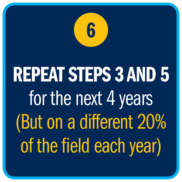 REPEAT STEPS 3 AND 5 for the next 4 years  (But on a different 20% of the field each year)