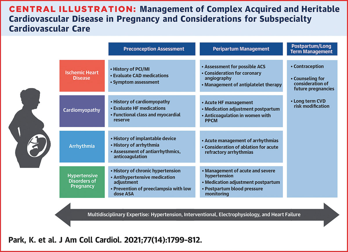 Feature   Cardio-Obstetrics: Insights From JACC Focus SeminarFeature   Cardio-Obstetrics: Insights From JACC Focus Seminar