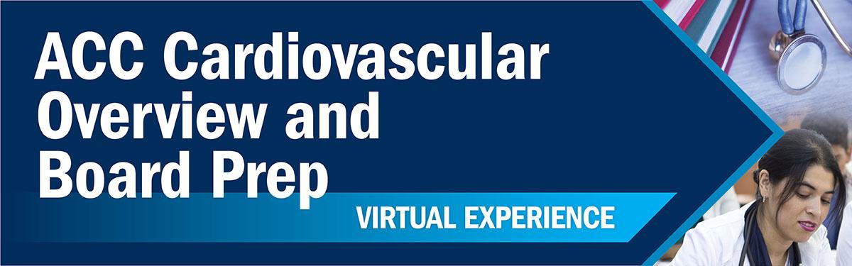 CV Board Virtual Experience