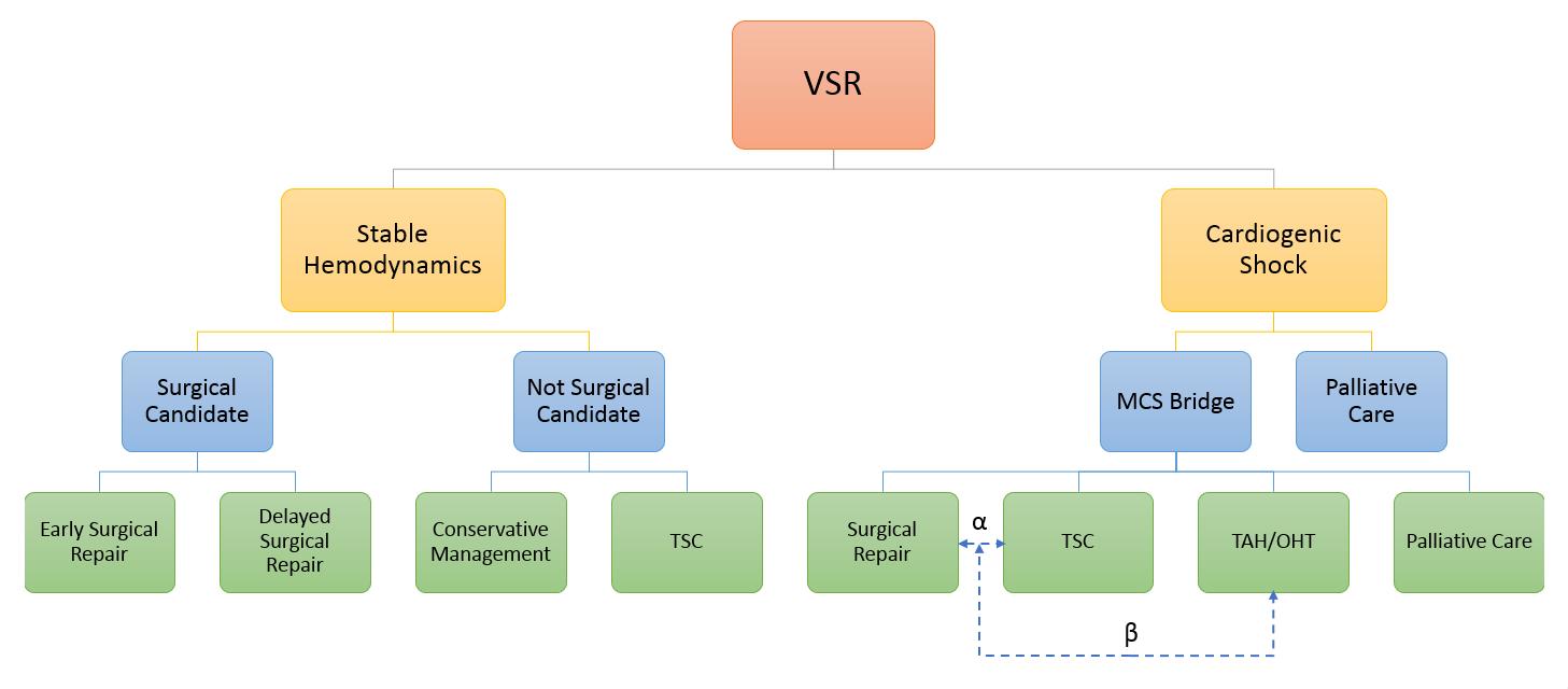 Contemporary Management of Post-MI Ventricular Septal