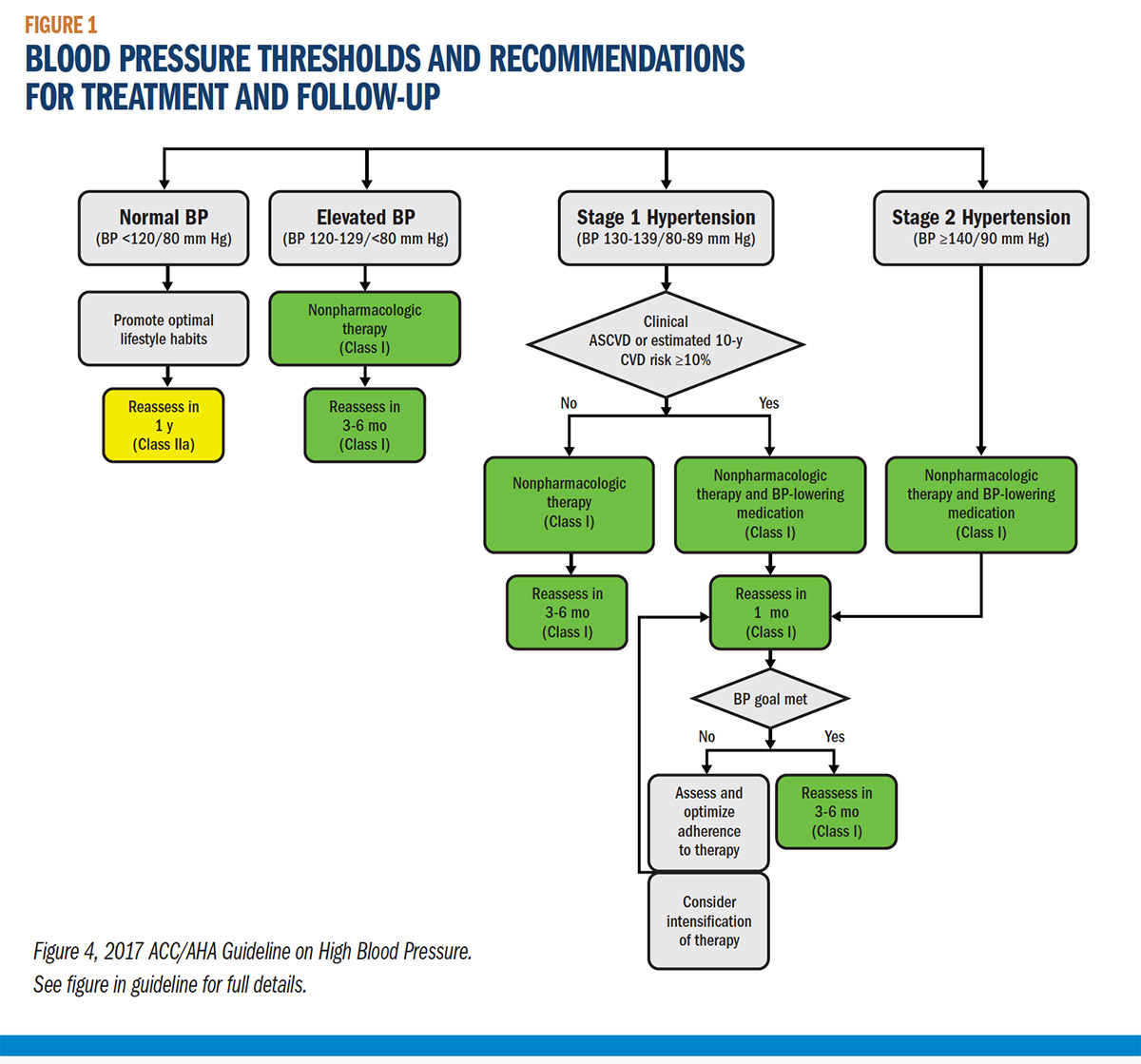 Cover story the 2017 high blood pressure guideline risk figure 1 blood pressure thresholds and recommendations for treatment and follow up nvjuhfo Choice Image