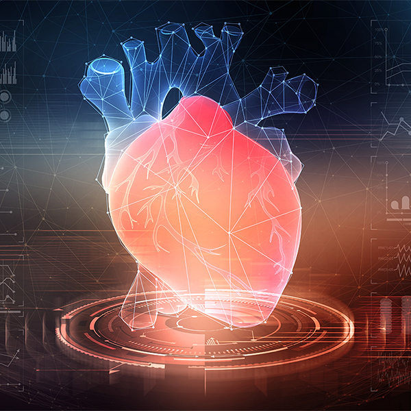 Conceptual image of a heart