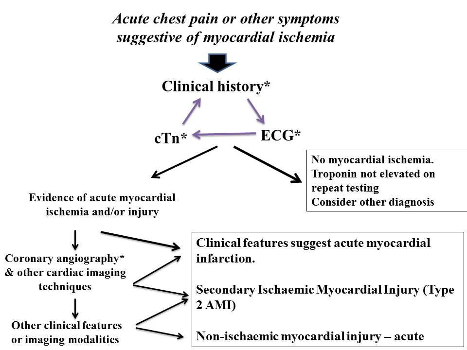 the definition and causes of a myocardial infraction Myocardial infarction is defined as loss of cardiac myocytes (necrosis) caused by   importantly, when a patient's symptoms and ecg are clearly indicative of an.