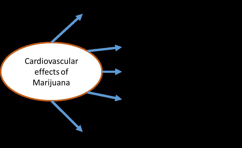Marijuana and Coronary Heart Disease - American College of