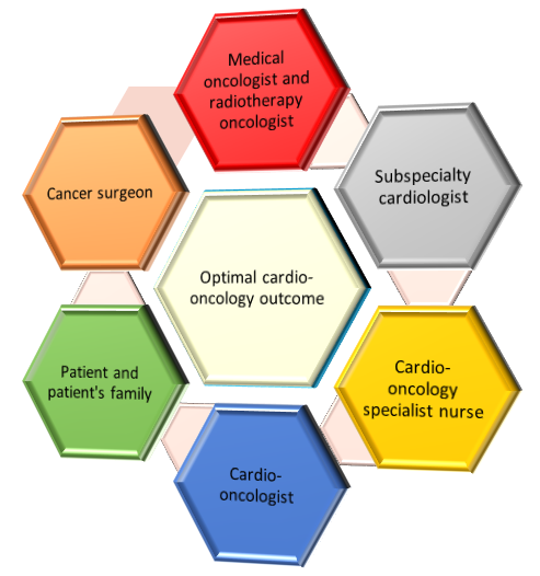 How to Build a Cardio-Oncology Service - American College of
