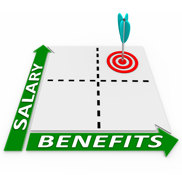 Salary and Benefits Image