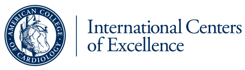 International Centers of Excellence